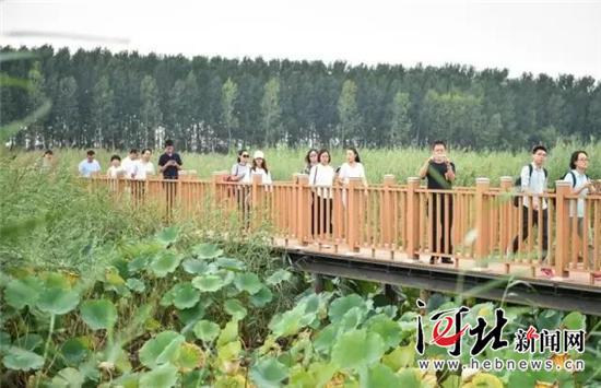 9月10日,中央新闻媒体采访团赴雄安新区集中采访。 赵杰摄