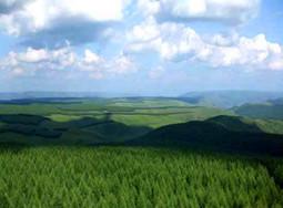 河北省森林面积达9000万亩 森林覆盖率达32%