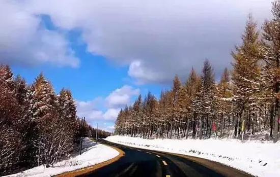 我们都知道围场境内有一个美丽的塞罕坝,但是深秋雪后的塞罕坝你一定没有见过。(张伟)
