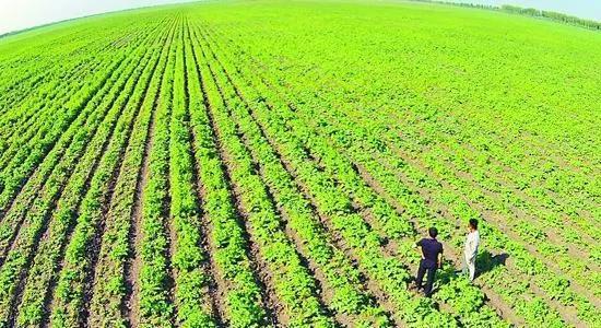 支持农业结构调整