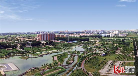 辛集市东部湿地公园。(资料片)河北日报记者史晟全摄