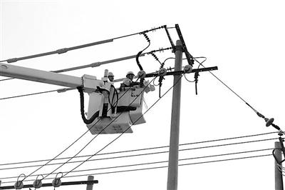 6月30日,国网石家庄供电公司员工顶着烈日开展带电作业。