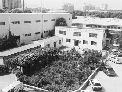 开在违建里的幼儿园 本报记者 杨琦 摄