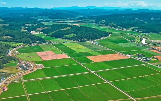 农村建设用地整治重点区域共包括96个县(市、区)