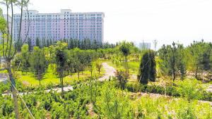 2017年建成的保定西南湖公园绿意浓浓,曾是垃圾填埋场。