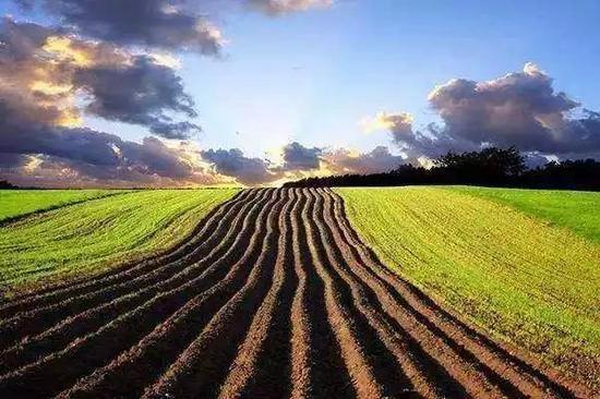 特色农产品产业聚集区