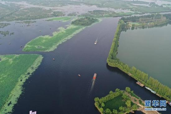 这是7月15日在雄安新区拍摄的白洋淀景色(无人机照片)。新华社记者 朱旭东 摄