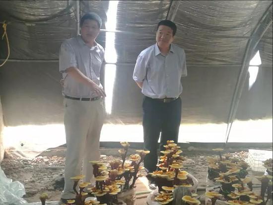 史宝强一行参观海兴县三丁湾新阶层实践创新基地