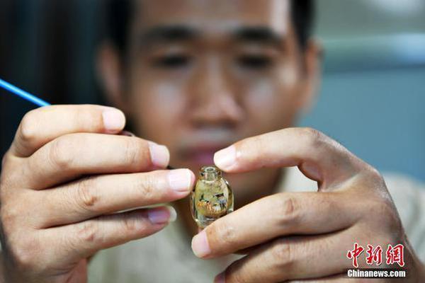 指甲大鼻烟壶内装167只鸟