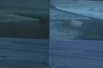 降雪致首都机场部分航班取消 160辆除雪车全部到位