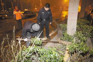 ■民警、市民李先生、环卫工一起挪动倒地的树干。