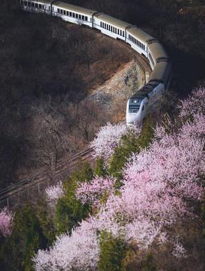 那趟开往春天里的列车又来了