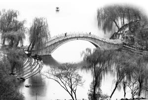 昨日烟雨蒙蒙,裕西公园美景如画。   本报记者张海强 摄