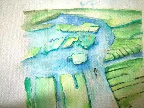 芦苇荡是白洋淀的标志之一。 新华网原创手绘