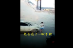 邯郸魏县一女子因低头看手机被越野车撞飞20米