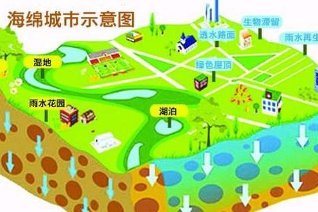 石家庄将建设海绵城市 规划建设8个湿地公园