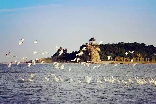 河北这个城市要打造世界一流滨海康养旅游度假区