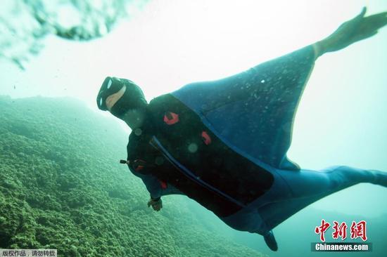 """水底""""飞行"""" 潜水员""""海洋之翼""""水下翱翔(图)"""