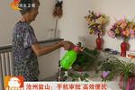 沧州盐山:手机审批 高效便民