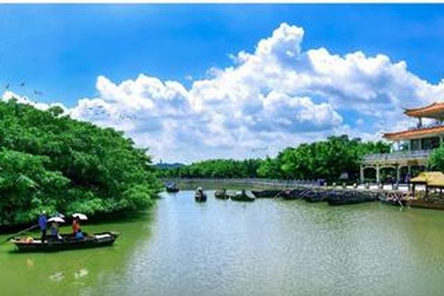 江门成功创建国家森林城市