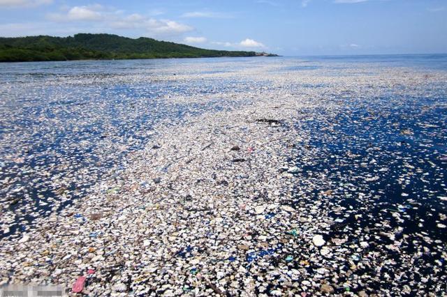 """加勒比海岛现""""塑料海洋"""" 潜水胜地成垃圾场"""