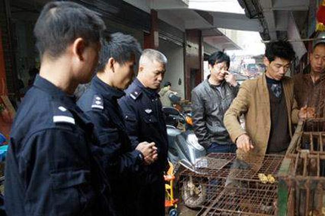 """河北""""金网行动"""" 严打破坏野生动物资源违法犯罪"""