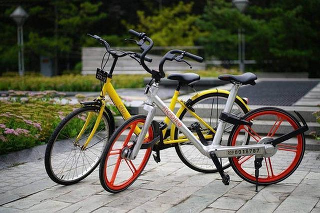邯郸给共享单车立规矩 现阶段不发展共享电动单车