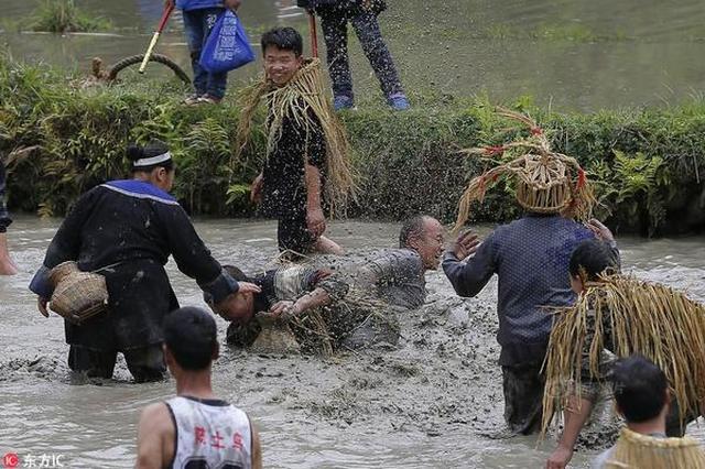 苗族情人节 农民泥塘抓鱼摔跤比赛嗨翻天
