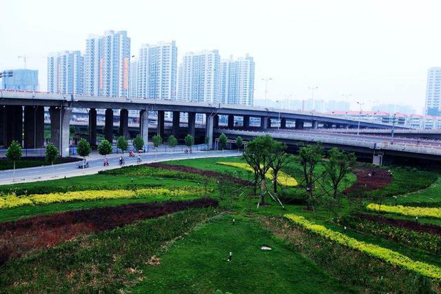 邯郸年内计划完成8件政府立法项目 其中废止1件