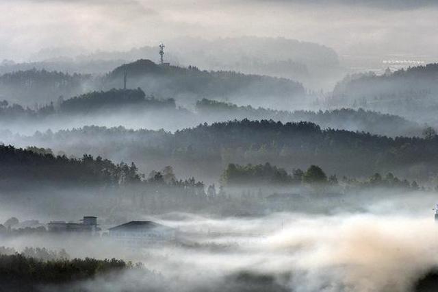 贵州凤冈 梦幻茶乡