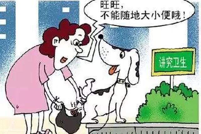石家庄市民注意:发现这样养狗的可直接打110