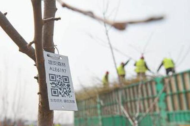 雄安新区建城:蓝绿空间占比70% 街道100%林荫化