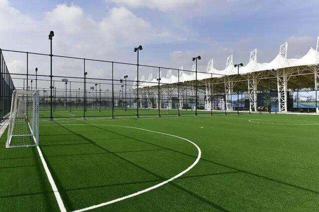 廊坊市将新建16个免费向社会开放的足球场地