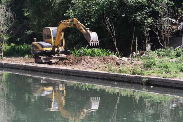 保定这些地方的私搭乱建都被清了 秋天将进行绿化