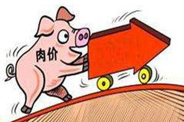 猪价自5月份止跌后持续反弹 专家:属季节性回升