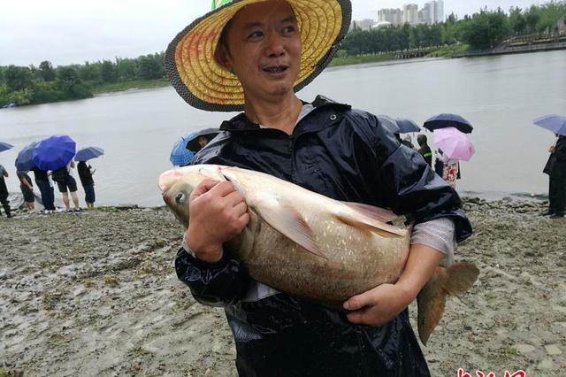 四川高校捕捞万斤肥鱼请师生免费吃