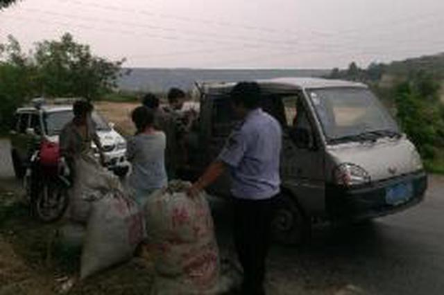 涉县一农民3000余斤花椒被盗 共计损失30余万元