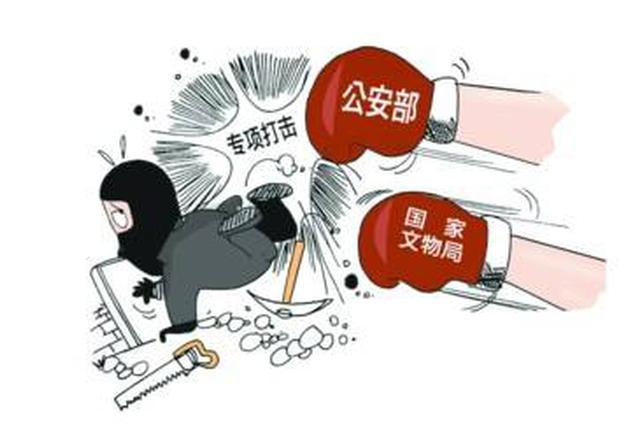 全国打击文物犯罪专项行动启动 为期6个月