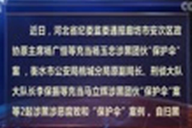 """河北通报2起涉黑恶腐败和""""保护伞""""案例"""