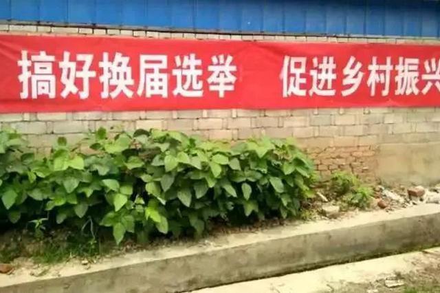 """河北全省村社区""""两委""""换届启动 """"十条禁令&qu"""