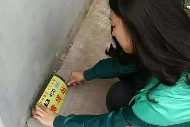 邯郸设置17000个灭鼠毒饵站 请看护好孩子或宠物