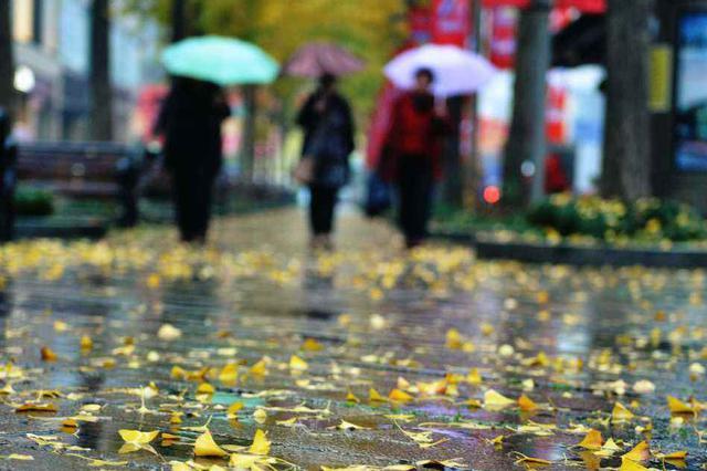 河北省已全部入秋 降雨降温大风接踵来袭