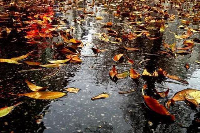 河北多地中雨马上到!冷空气+雾霾组团来袭