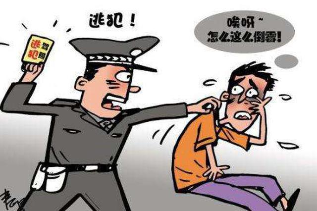 石家庄:轿车遇检查调头逃跑 拦截发现司机是逃犯