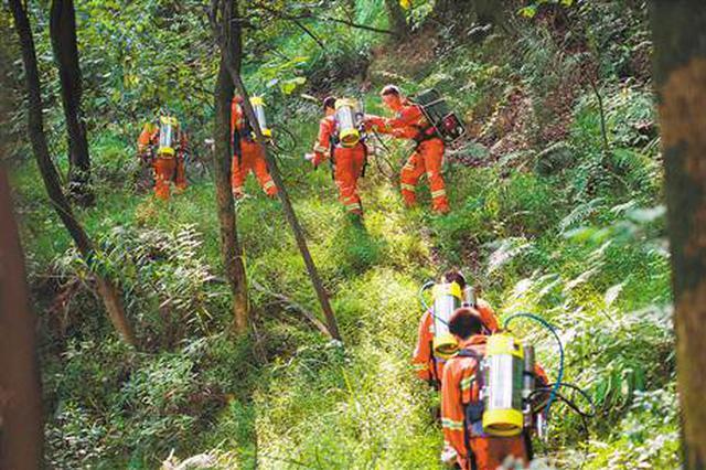 石家庄:森林防火期内 山场及周边严禁这六种行为