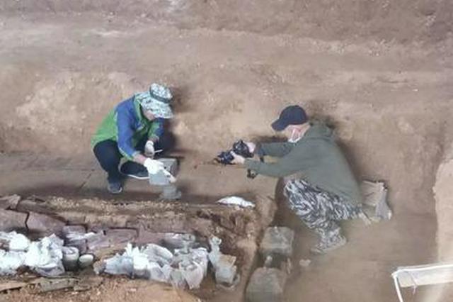 洛阳发现西汉大墓 出土青铜壶里有液体疑似为美酒