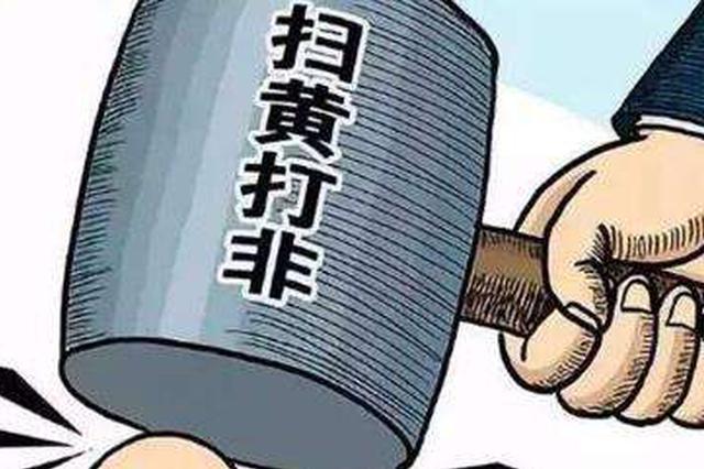 """河北""""净网2018""""行动战果不凡 抓获嫌疑人300余名"""