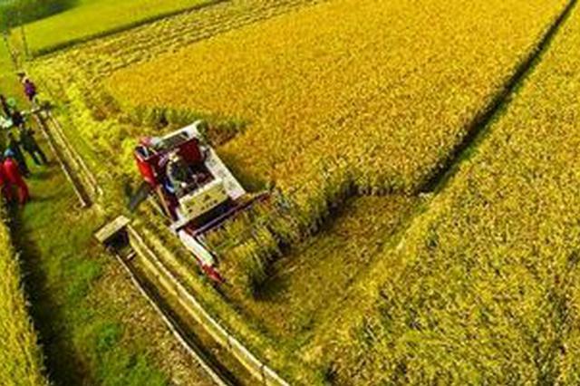 沧州发布6项市级农业地方标准 12月20日实施