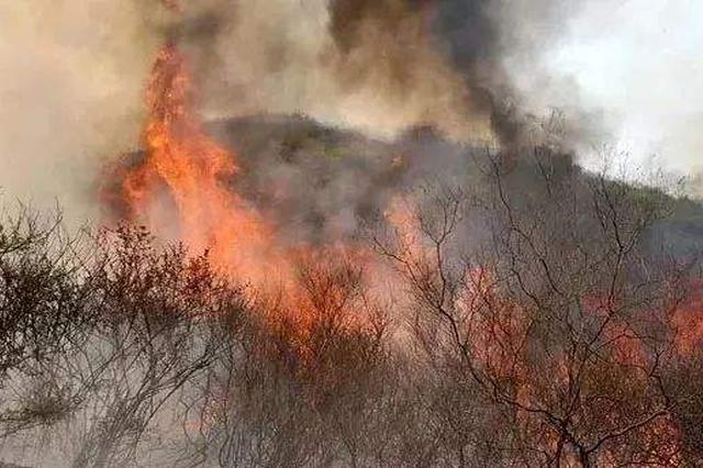 河北严打野外违法用火行为 重点是烧荒烧纸等