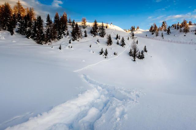 游客滑雪被撞昏迷 易县交警火速送医